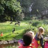 Pairi Daiza - Section Maternelle - Septembre 2014